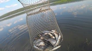 Поймал много хариуса! Рыбалка на хариуса удалась! Уловистые мушки и полный отчет о рыбалке!