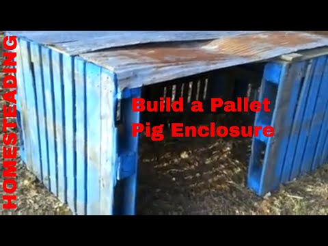 Pallet Project: Pig / Hog House