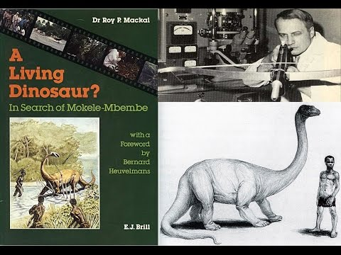 Dr. Roy P. Mackal, Mokèlé-mbèmbé 1984 Interview - BBC Radio