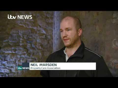 Neil Marsden on ITV Tyne Tees News