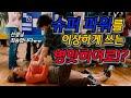 [짤툰 오리지널] 서열 정리 - YouTube