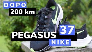 Nike Air Zoom Pegasus 37 recen…