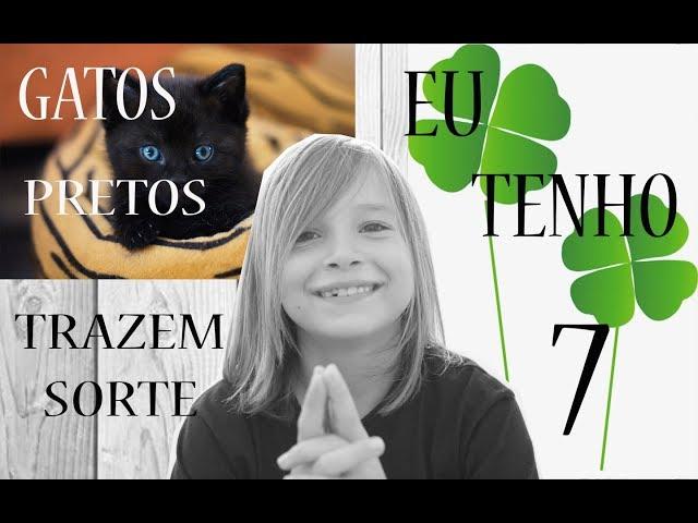GATOS PRETOS TRAZEM SORTE, EU TENHO 7  - Aris.TV, Ep. 62