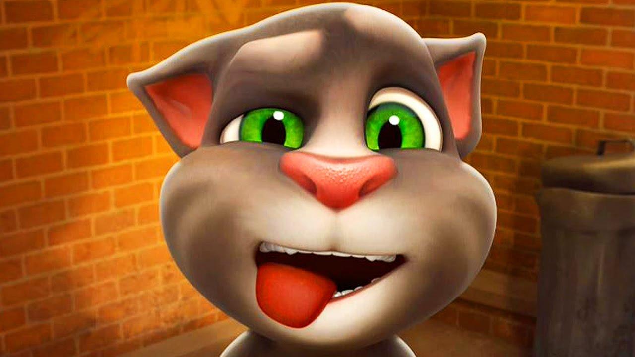 Картинка кота тома из игры