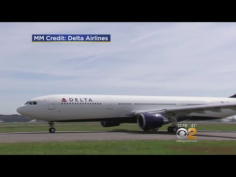 Delta's Online Chat Service Hacked
