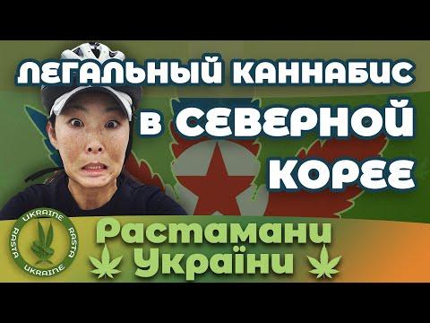 Каннабис в Северной Корее - Легалный!