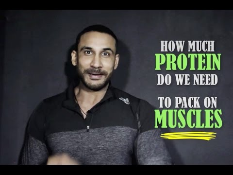 How Much Protein To Pack On Muscles