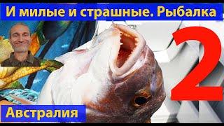 Морская рыбалка видео для рыбаков Океанские рыбы и твари лучшее Часть 2 видео 395