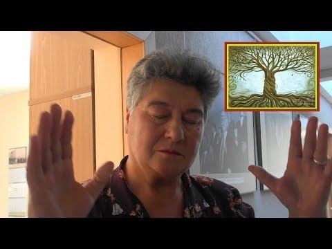 MIŠKŲ REFORMA: niekas pasaulyje nežino tikrosios medienos kainos! Signatarė Birutė Valionytė