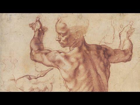 Human Anatomy - Anatomy Master Class