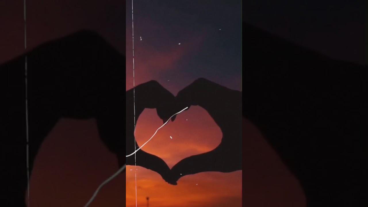 Live Wallpaper Aesthetic 2 Youtube
