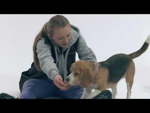 Akademia Był sobie pies - Natalia, Donna i Furia (premiera filmu: 17.02.2017)