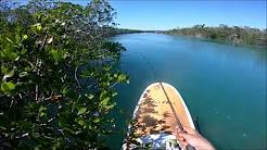 PADDLE BOARD FISHING EXPLORING THE FLORIDA KEYS