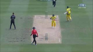 Wade & Cummins running between wickets