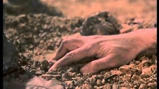 Cosmos 1999 - Generique Question de vie ou de mort (s1ep2).flv