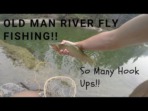 Fly Fishing In The MOUNTAINS!!  Old Man River 2018