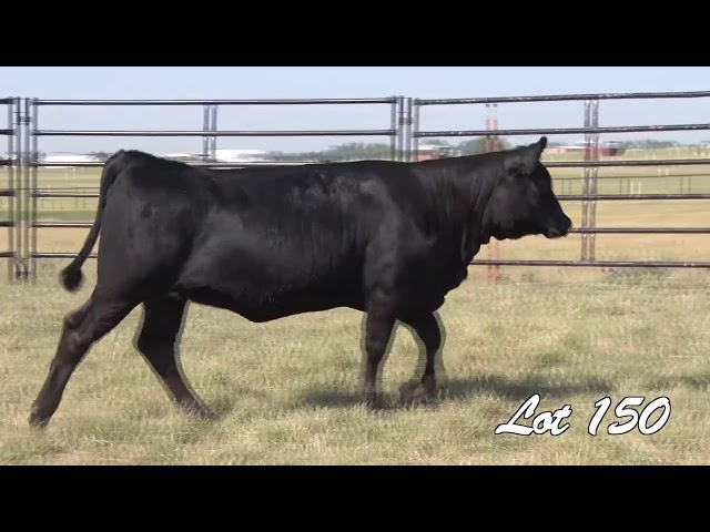 Pollard Farms Lot 150