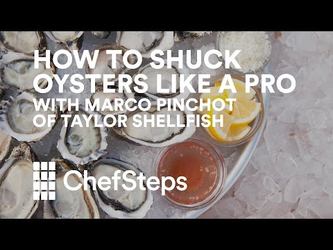 How To Shuck Oysters Like A Pro, With Marco Pinchot Of Taylor Shellfish