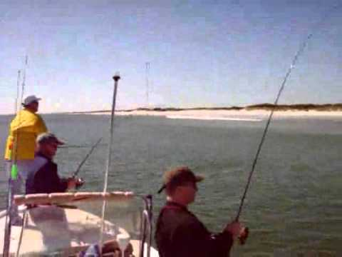 Over fishing Red Drum