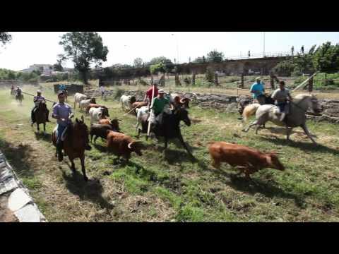Fiestas Sancti Spiritus 2017, primer encierro a caballo
