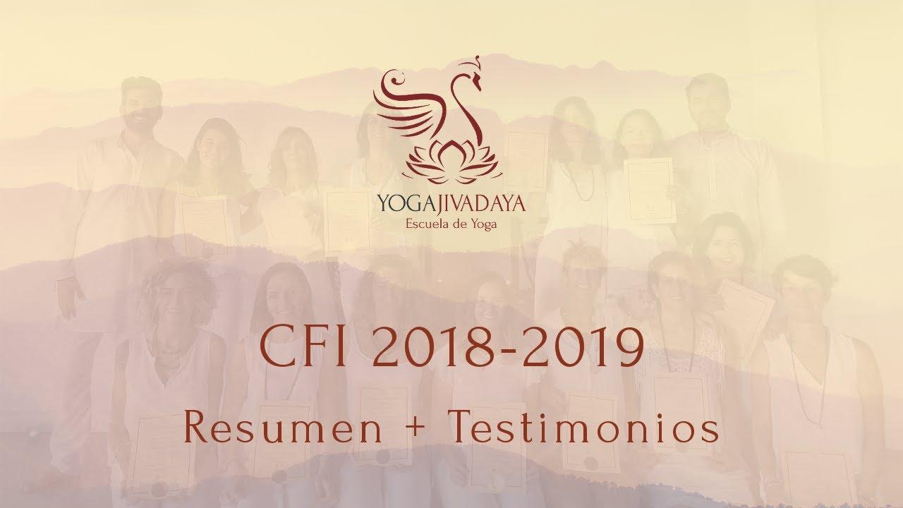 CFI 2018-2019 | Resumen + Testimonios