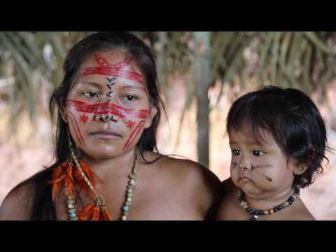 Brésil Amazonie Rencontre avec des Indiens / Brazil Amazon Meeting with indians
