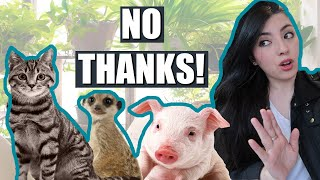 Animals I Would NEVER Want To Have As A Pet! | EMZOTIC