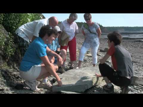 Joggins Fossil Cliffs, NS, Bay of Fundy Travel Show Ep 19