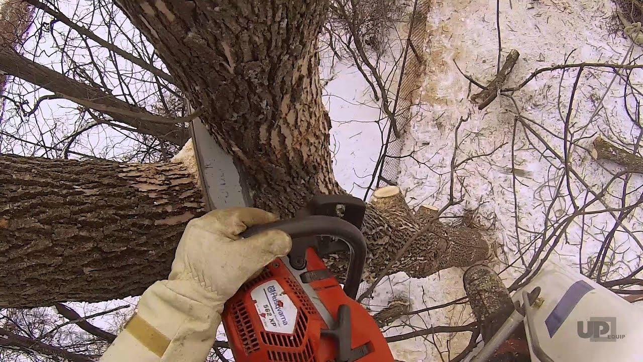 tree removal in tight backyard easy lift 59 30aj youtube