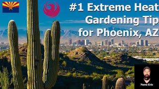 #1 Extreme Heat Gardening Tip for Phoenix, AZ (July 2019)
