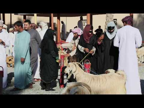 Ein Sachse im Oman Teil 4 – Souq