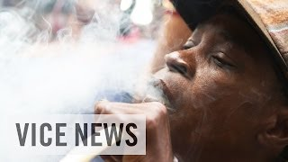 Jamaican Bud Business : Meet Medicanja