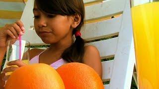 L'orangeade - Fr