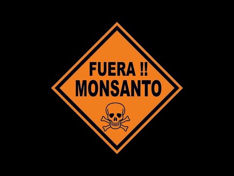 NOAL Crew - No a Monsanto