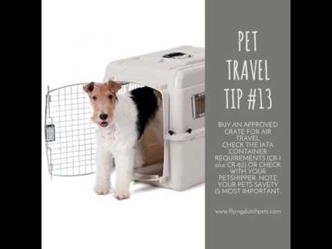 Flying Dutch Pets travel tip 13