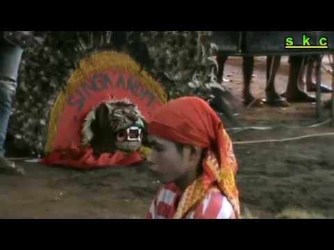 Reog ponorogo ebeg sekar sari budaya widara payung cilacap