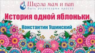 История одной яблоньки. Константин Ушинский. Аудио сказка