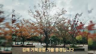 김해거북공원 단풍구경하세요 가을이네요