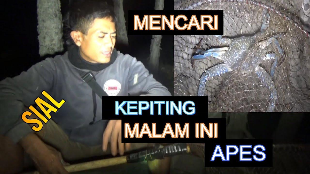 Download SIAL#Mencari Kepiting Malam Ini Apes.