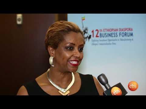 Ethiopian Diaspora Business Forum 2018