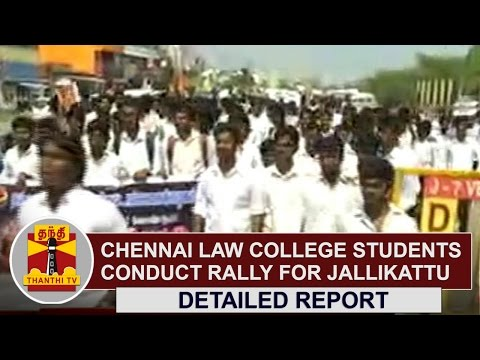 Chennai Law College Students conduct rally demanding permission to hold Jallikattu | Thanthi TV
