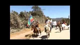 Marcha por los Ríos y Aguas Libres 8: Impresiones de Neltume y Entrada a Puerto Fuy