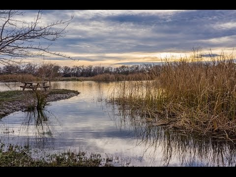 Northern California Duck Hunting Property For Sale | Rough Cut Ranch, Butte County California
