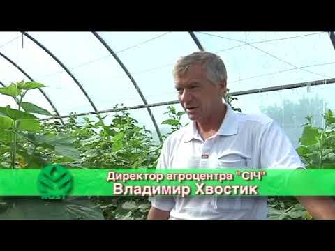 видео: Rost® концентрат Секреты применения Серия 4