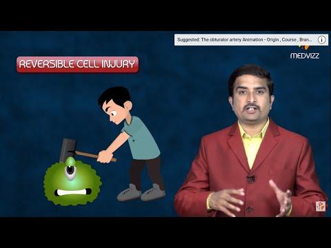 Reversible cell injury -  General Pathology Animated USMLE Lecture -Dr Bhanu prakash