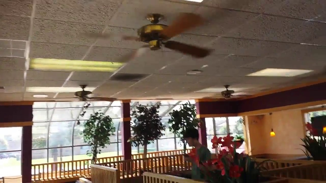 Homestead universal ceiling fans in a restaurant with brian fan of homestead universal ceiling fans in a restaurant with brian fan of fans mozeypictures Images