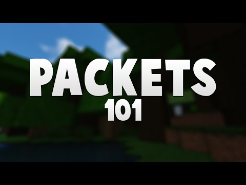 Packets 101: Reading/Writing Minecraft Packets