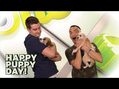 Happy Puppy Day!