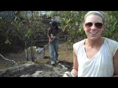 Tilapia Pond Building Youtube