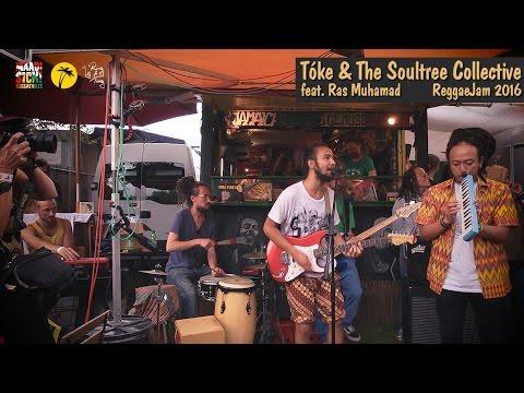 Tóke & The Soultree Collective feat. Ras Muhamad @ Reggae Jam 2016
